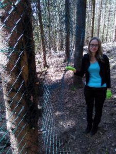 Verena Gronemann vor einer Habichtskauz-Freilandvoliere