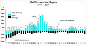 Die Waldfläche in Bayern nimmt weiter zu