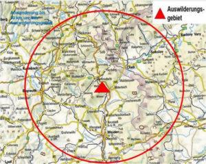 Das Auswilderungsgebiet des Habichtskauz-Projekts in Nordbayern