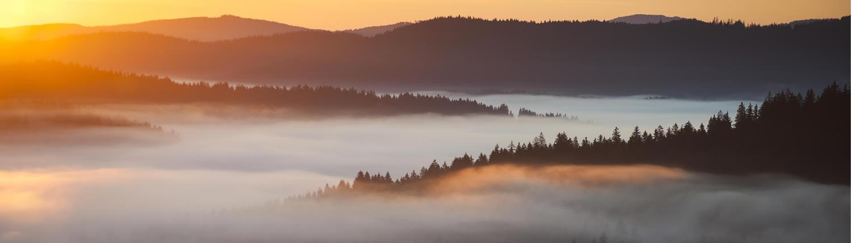 Slider 1 – Landschaft im Bayerischen Wald
