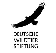 Logo der Deutschen Wildtier Stiftung